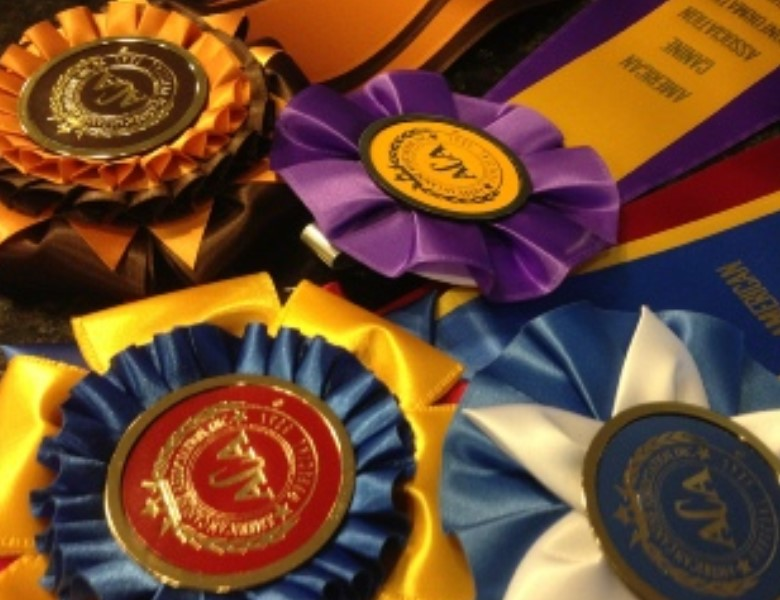 proud puppy love grey hound aca ribbons